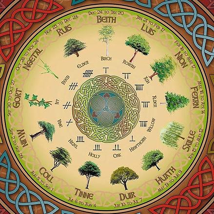 Celtic tree calendar.jpg