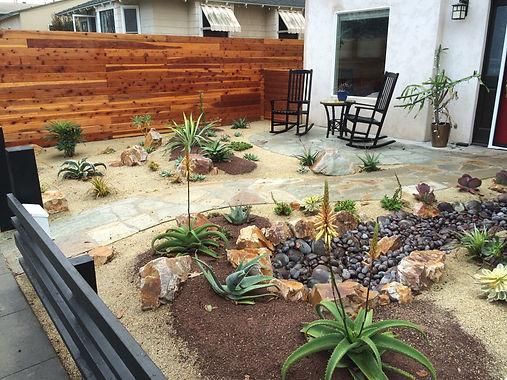 san-diego-drought-tolerant-garden.jpeg