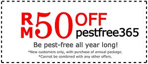 discount coupon.png