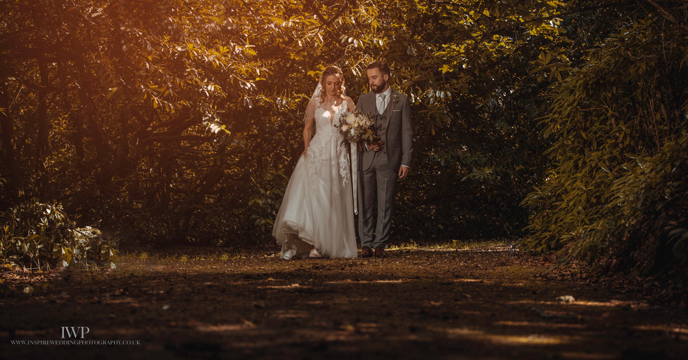 Plass Hafod wedding photographer