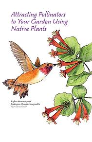 Attracting Pollinators.png
