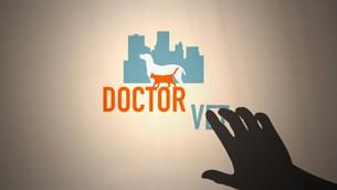 DOCTOR VET