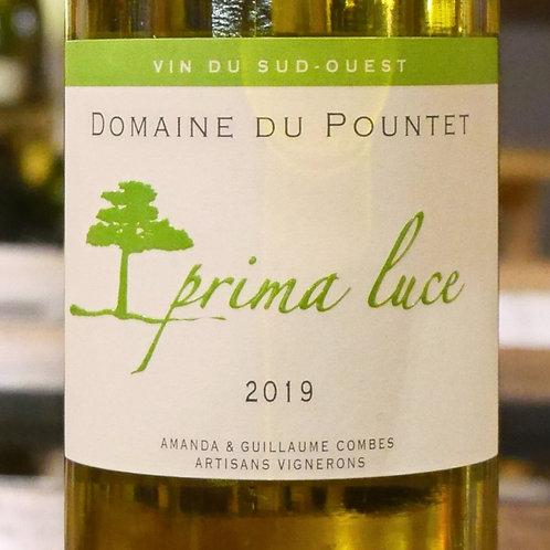 IGP Comté Tolosan «Prima Luce» 2019 Domaine du Pountet