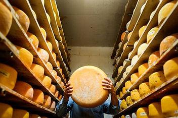 Veldhuien Cheese Shoppe artisan cheese