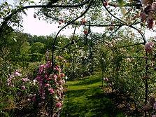 CC Jardin fleuri-chateau 07-04.JPG