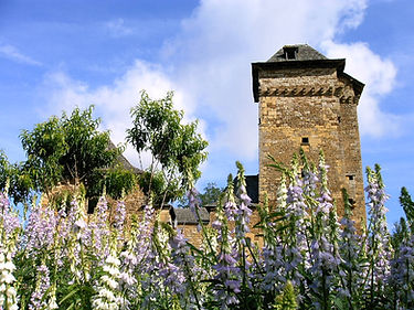Chateau avec gallegas 06-04.JPG