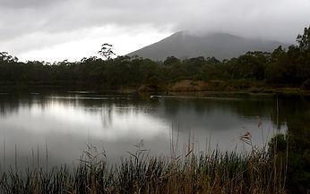 Coranderrk-Healesville.jpg