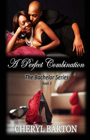 A_Perfect_Combinatio_Cover_for_Kindle.jp