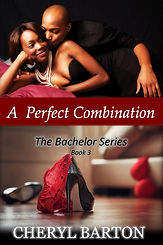 A Perfect Combination Final Cover 020121