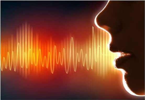 Voice Power: Pauses, Inflection & Tone
