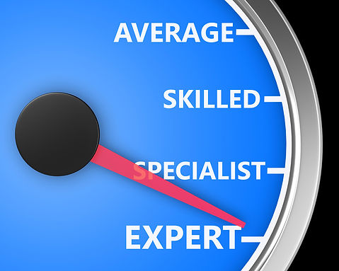 What a Subject Matter Expert Needs to Know About Training