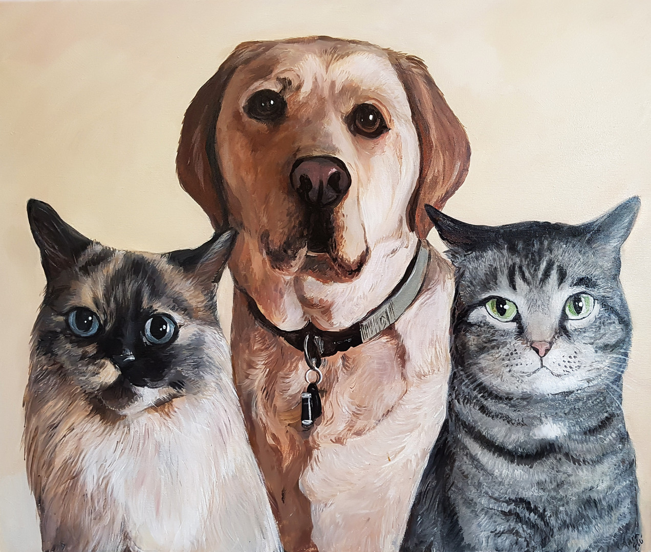 2 cats and a dog