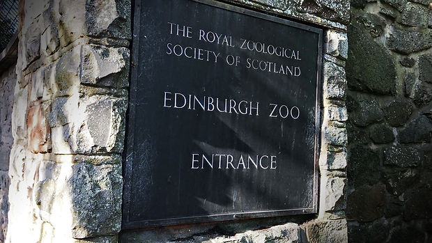 Edinburgh Zoo Scotland.jpg