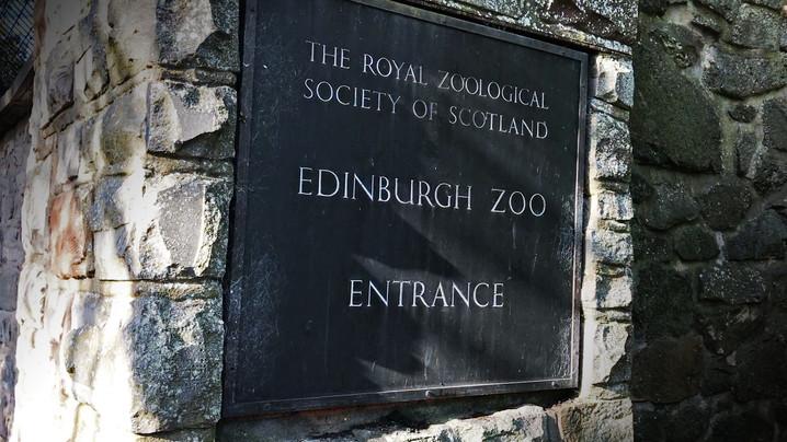 Edinburgh Zoo Scotland.jpg