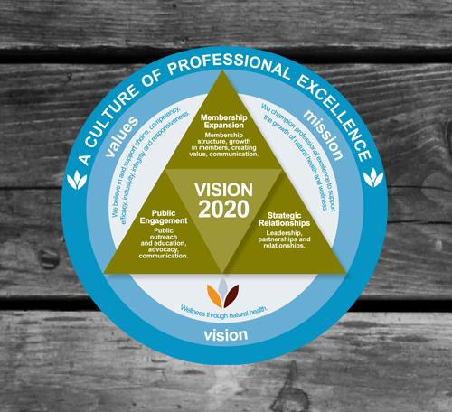 NHPC Vision 2020 Logo
