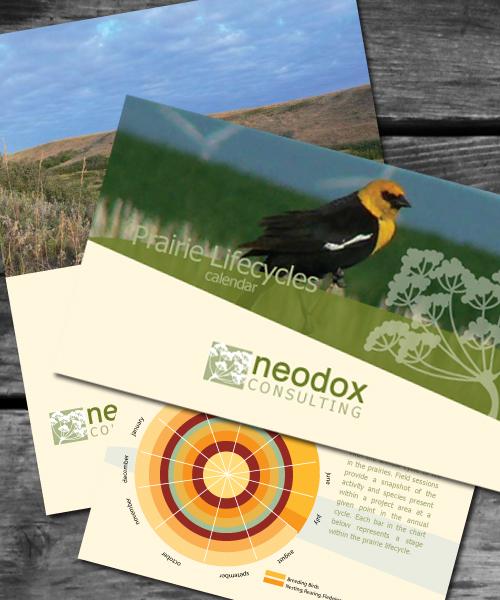 Neodox Consulting