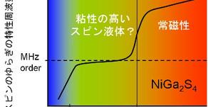 三角格子反強磁性体NiGa2S4における新しい2次元相転移と 不純物効果における新奇なスピンサイズ依存性