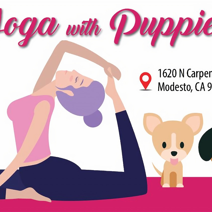 Yoga with Puppies! 1 pm Session
