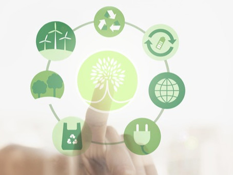 Conheça 4 atitudes simples para preservar o meio ambiente