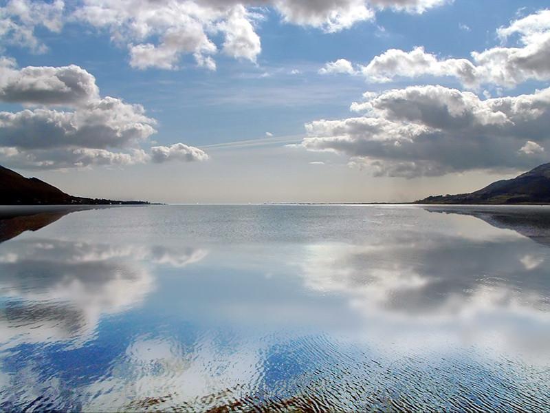 Seareflect by Sean McAleenan.jpg