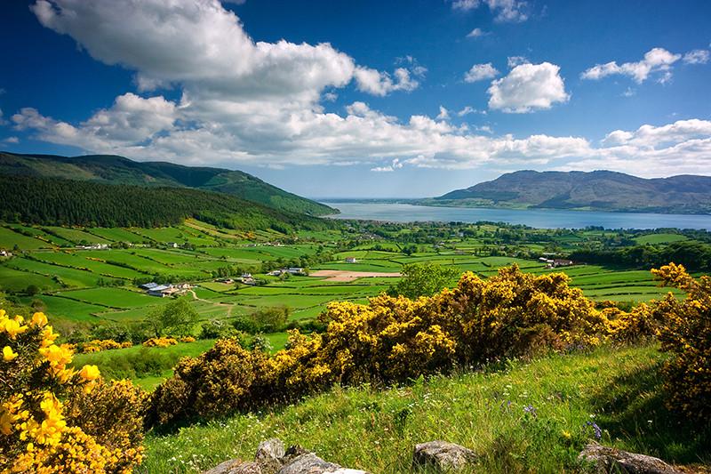 Rostrevor View by Sean McAleenan.jpg
