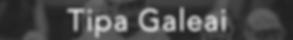 Tipa Galeai Gray.png