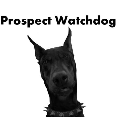 Prospect Watchdog: Renell Wren Interview