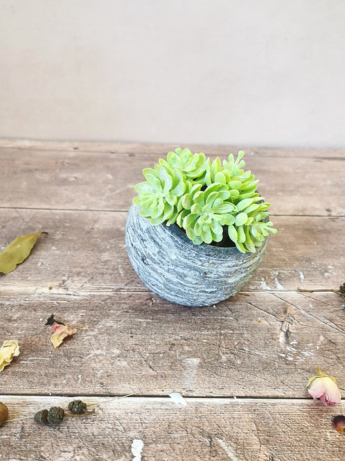 Asymmetric textured planter