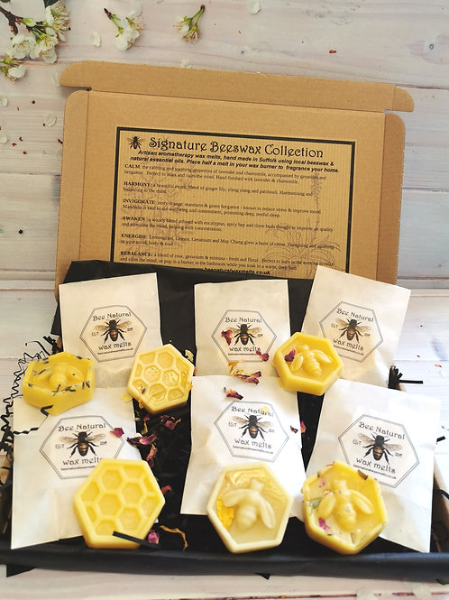 Introductory Signature Beeswax Collection