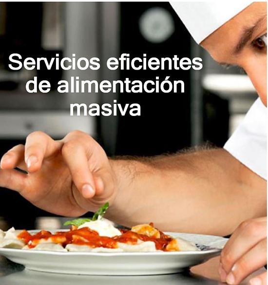 SERVICIO EFICIENTES DE ALIMENTACION MASI