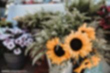 צילומי חתונה (12 of 29).JPG