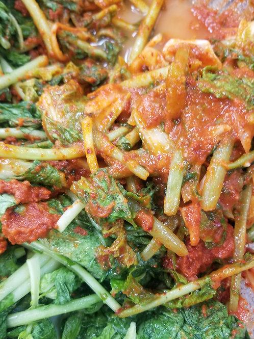 Twins Premium Yeolmu Kimchi 64oz