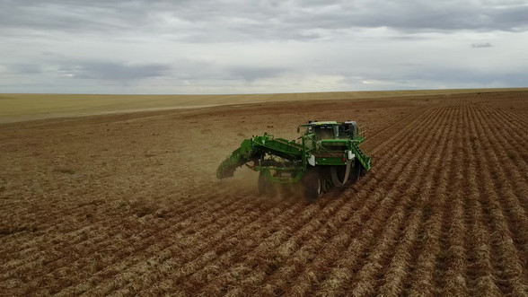 4 Row Self Propelled Wrap-A-Round Harvester
