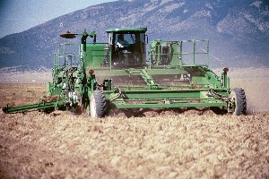 6 Row Self Propelled Windrower