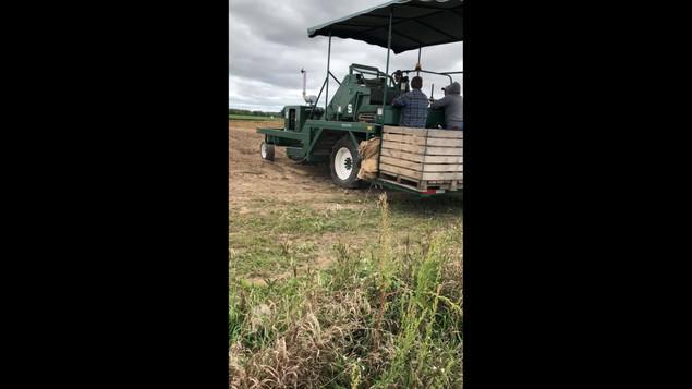 1 Row Self-Propelled Plot Harvester