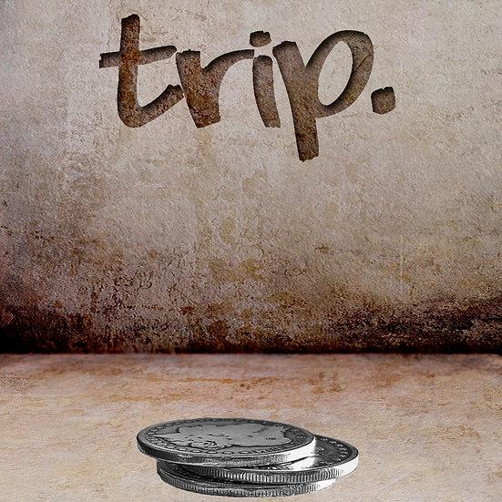 trip.