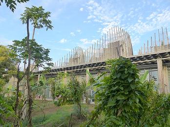 Ignames du Centre Culturel Tjibaou