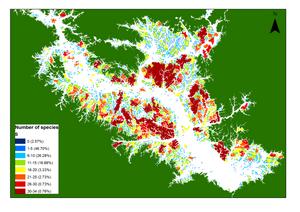 Carte du lac et de ses 3 528 îles : l'eau en blanc, les îles en couleur selon la légende.