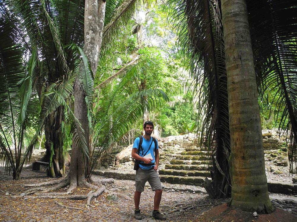 Un enquêteur dans les ruines mayas...