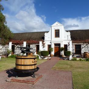 Cap sur les vins ! Climat et vignobles en Afrique du Sud