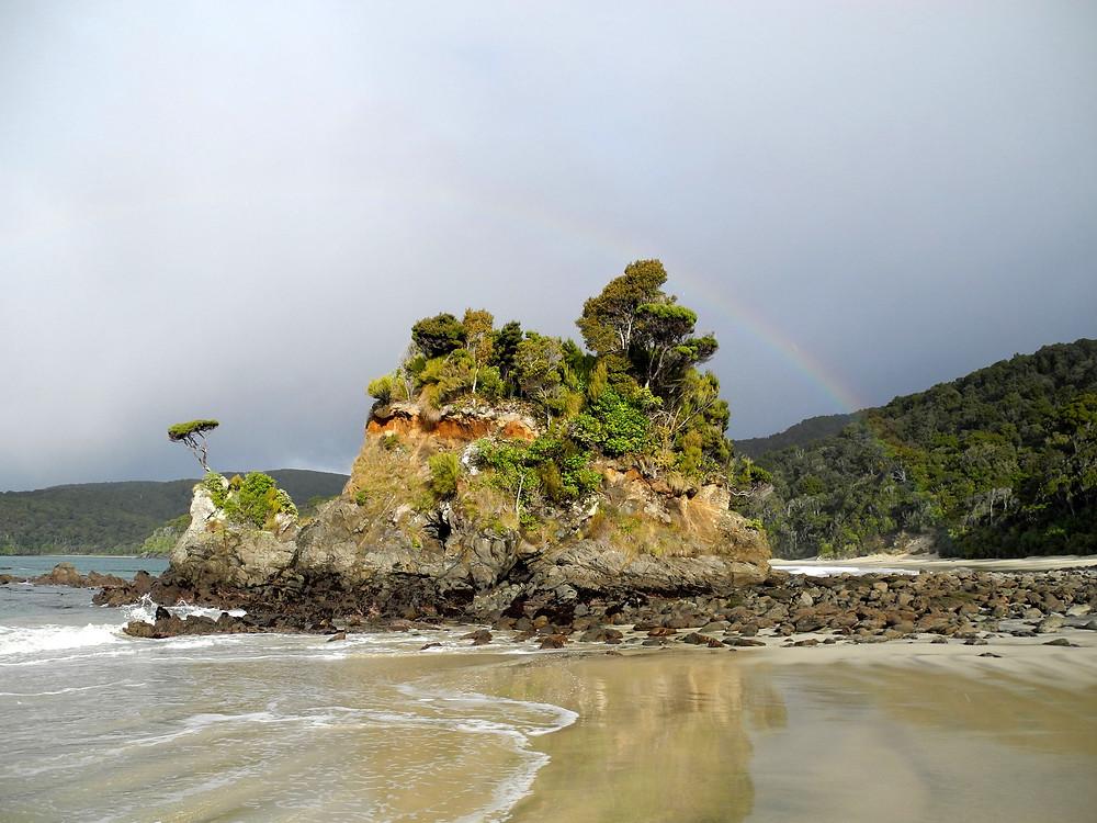Les rives vierges, magiques et pluvieuses de Stewart Island.