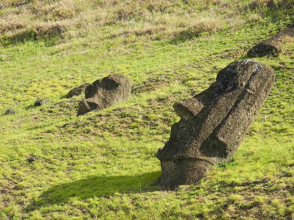 La société Rapanui de l'île de Pâques, comme les Mayas ou les Vikings du Groënland, a beaucoup à nous apprendre sur les conséquences de certains choix concernant l'environnement...