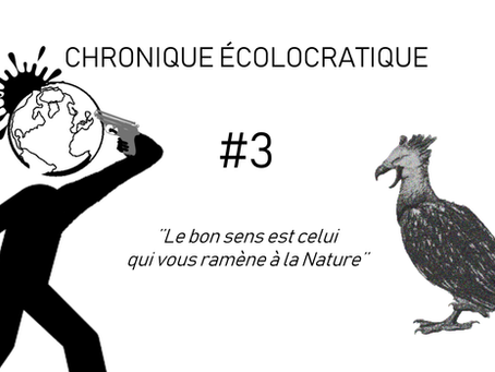 #3. Considérations écologistes