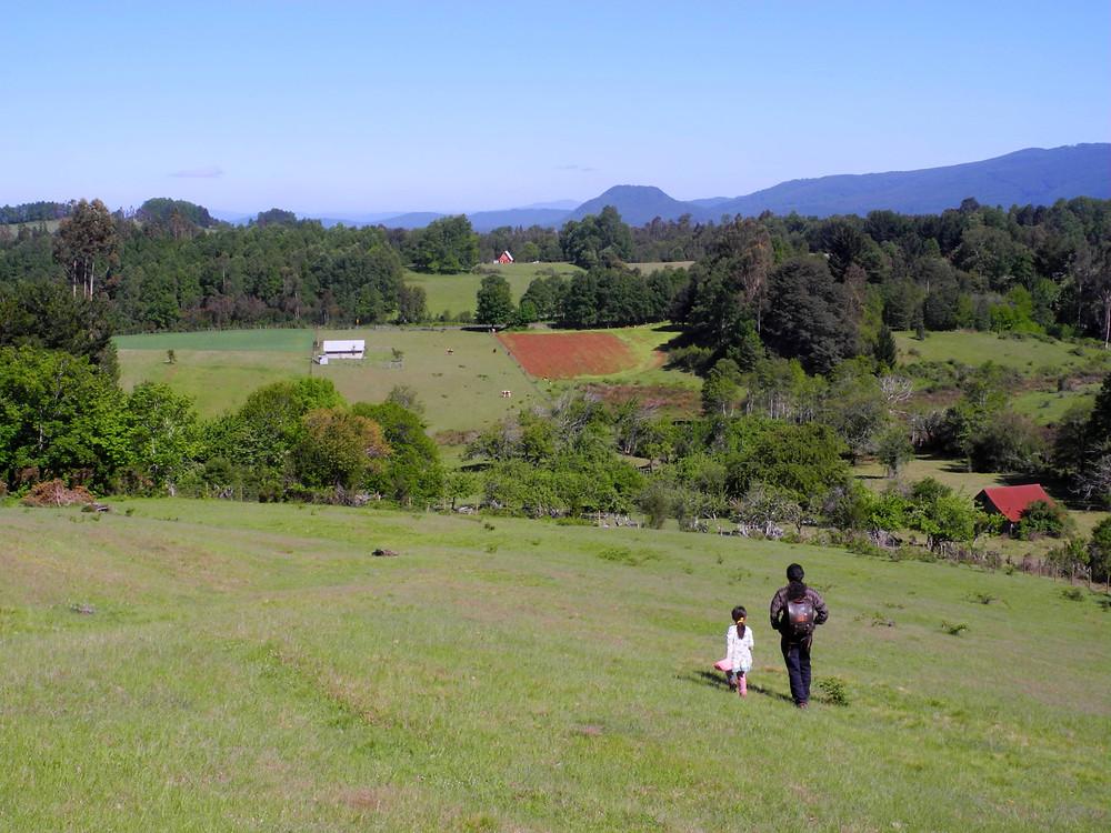 Les verdoyantes collines ancestrales sont-elles en danger ?