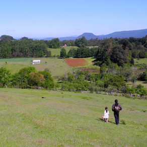 Mapuches, indigènes indignés