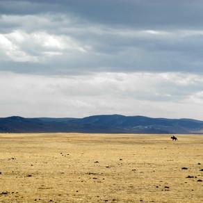 Mongolie, le nomad's land