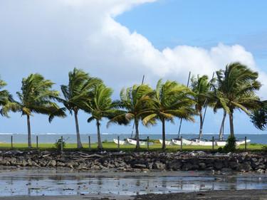 Port de Suva