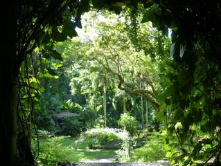 Gardens of the Sleeping Giant