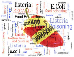 Food poisoning related terms, salmonella