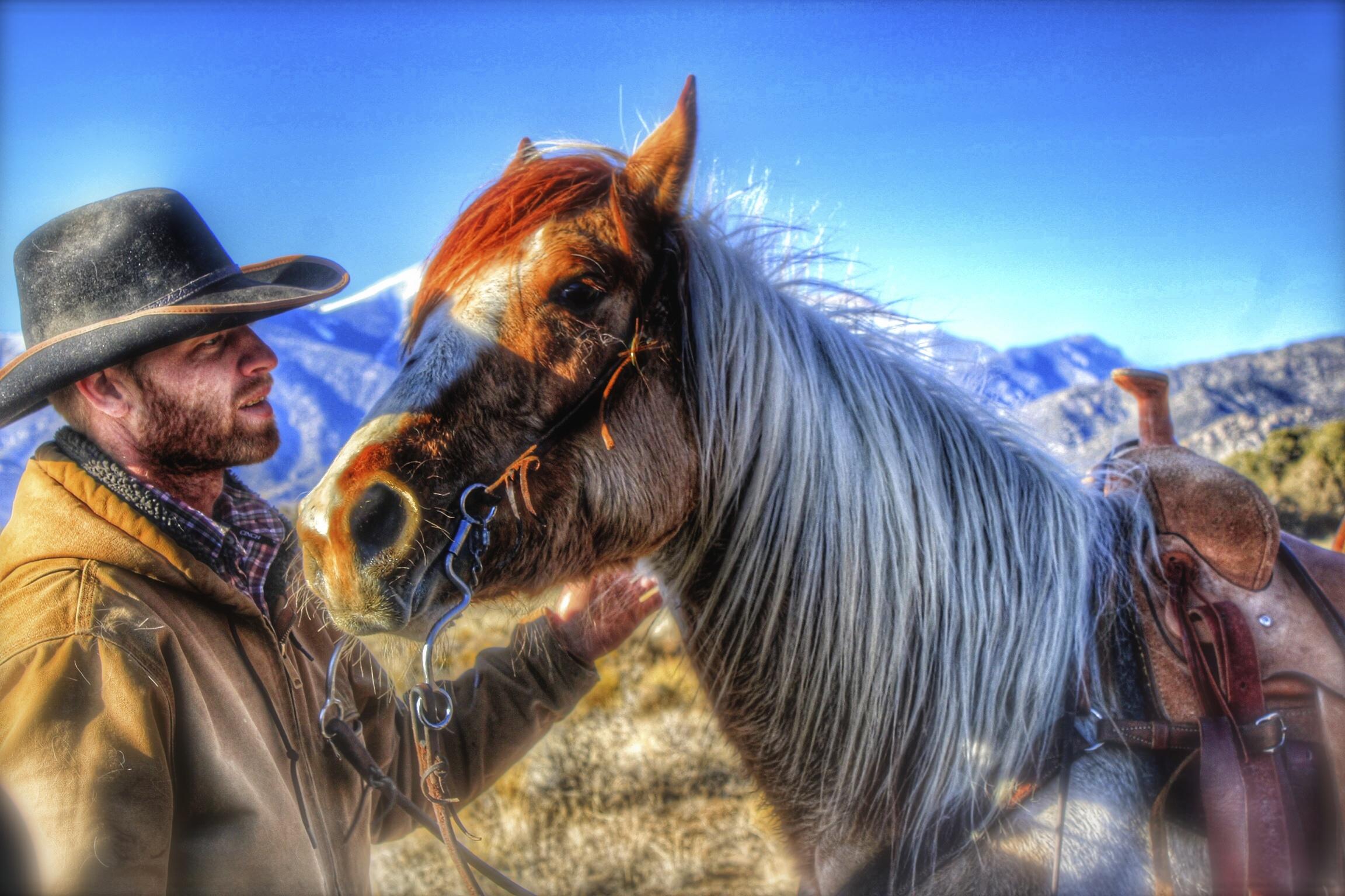 Medano Pass Cowboy